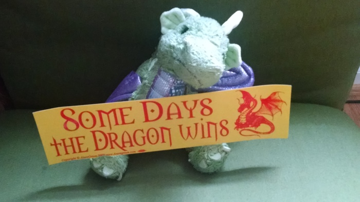 My school's mascot is a dragon. Because OF COURSE.