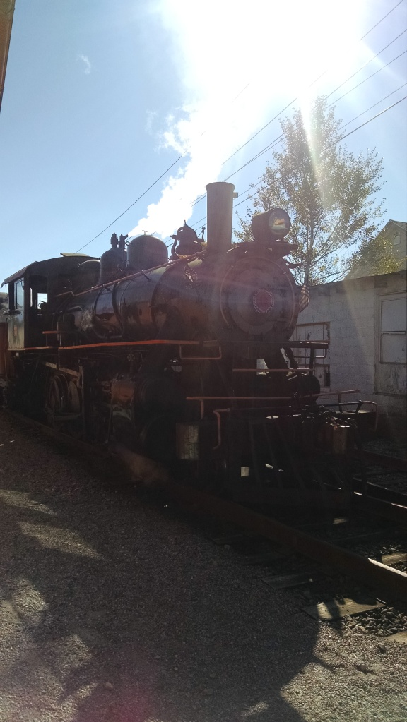 I went backwards in time on a 1920s steam engine last weekend in Buffalo, NY.